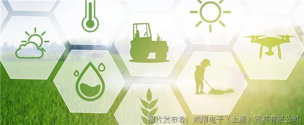 """智慧农业大有可为,""""数字种地""""更轻松"""