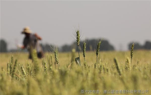 高標準農田建設 機井灌溉控制系統