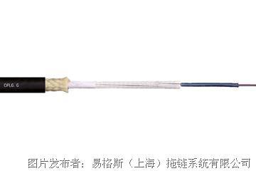 易格斯 裝配電纜-網絡CFLG.12G