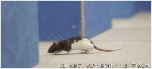 Win the Rat Race,歐姆龍移動機器人強大的自主導航能力