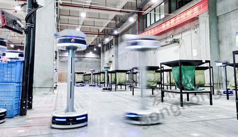 極智嘉分揀系統落地跨境電商企業棒谷科技,助力打造智慧物流引擎,加速業務發展